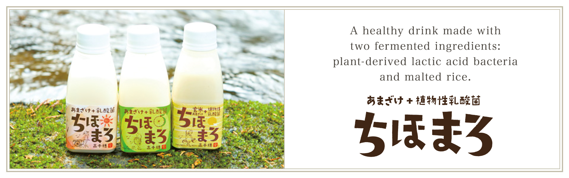 A healthy drink made with two fermented ingredients plant-derived lactic acid bacteria and malted rice. Chihomaro