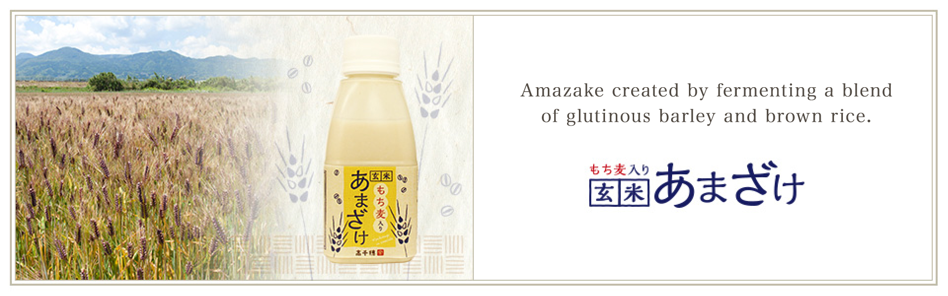 Amazake created by fermenting a blend of glutinous barley and brown rice. Glutinous Barley and Brown Rice Amazake