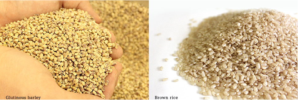Glutinous barley. Brown rice